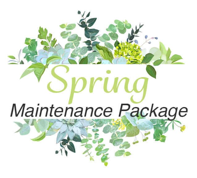 Spring Maintenance Package